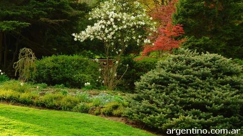 Mantenimiento de parques y jardines podas corte rboles for Diseno de parques y jardines
