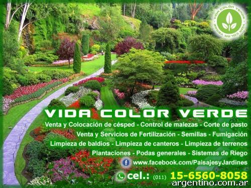 Vida color verde mantenimiento de parques y jardines en quilmes tel fono y p gina web - Mantenimiento parques y jardines ...