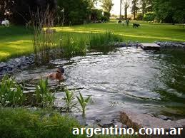 piscinas ecologicas with piscinas ecologicas