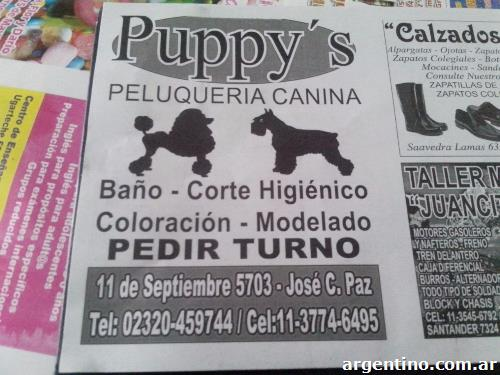peluquería canina puppy's en josé c paz: teléfono y dirección